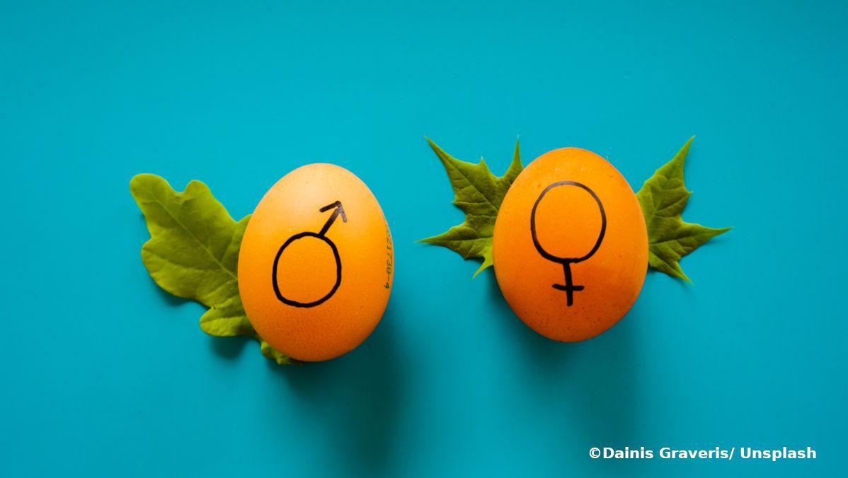 geschlechtergerechte Steuerpolitik ist ein Ansatz für die Gleichstellung der Geschlechter